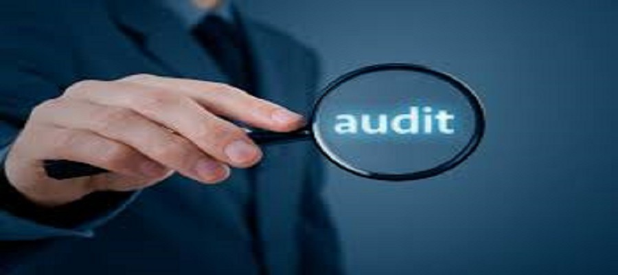 How is Field Audit Software in Pakistan Useful For Your Business Growth