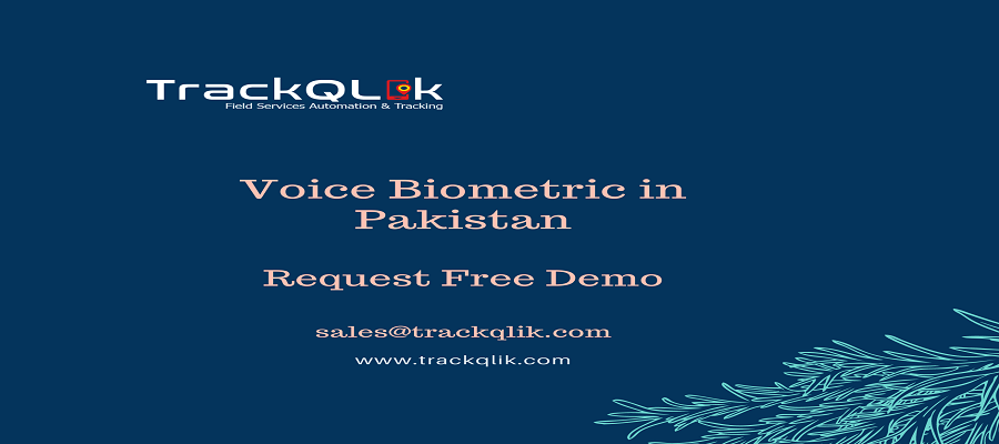 Voice Biometric in Pakistan Improve User Experience and Security of Electronic Health Records